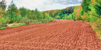 Simkea-Ortschaft:Ackerland